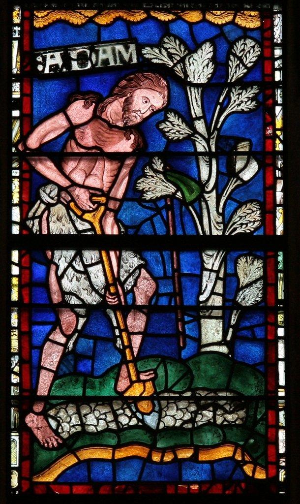 Витраж Адам, 1174 г.jpg