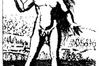 1529.1.jpg