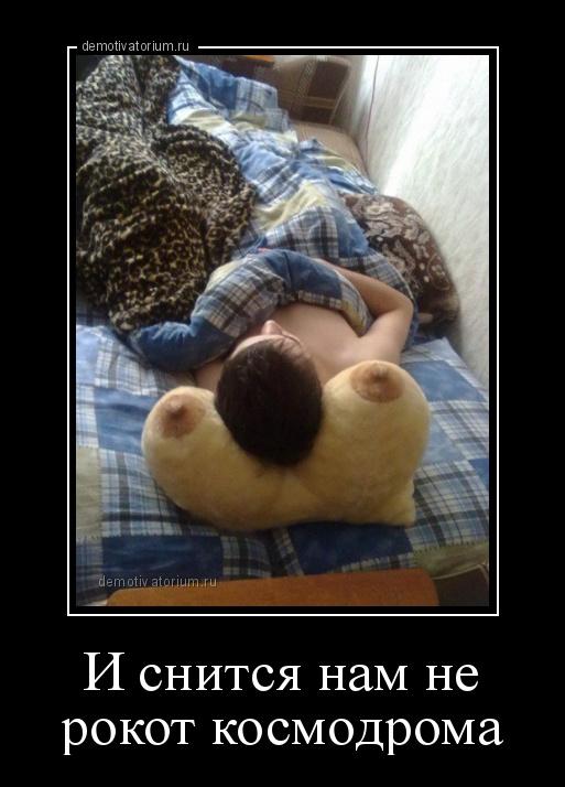 demotivatorium_ru_i_snitsja_nam_ne_rokot_kosmodroma_119815.jpg