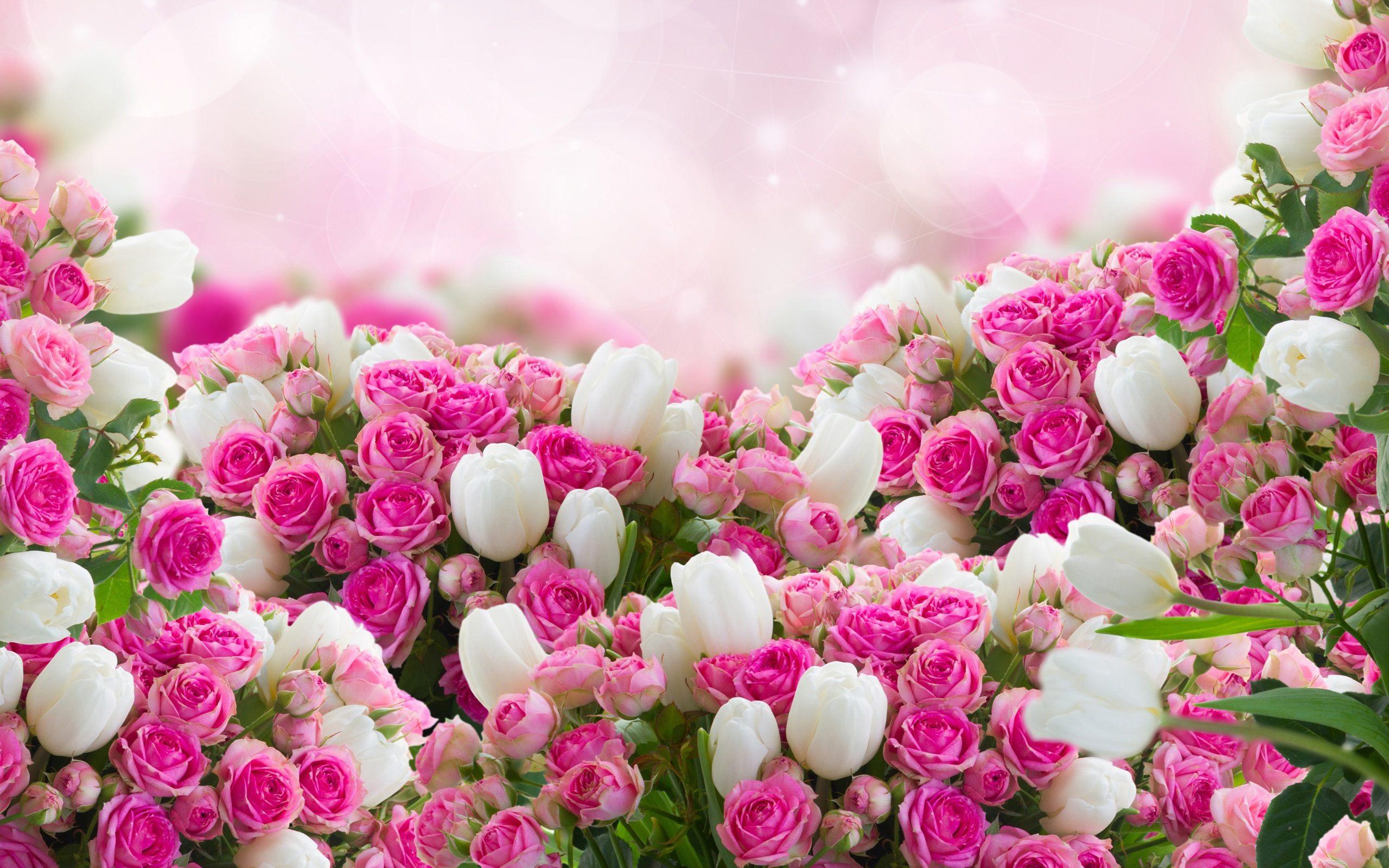 flower-wallpaper-22.jpg