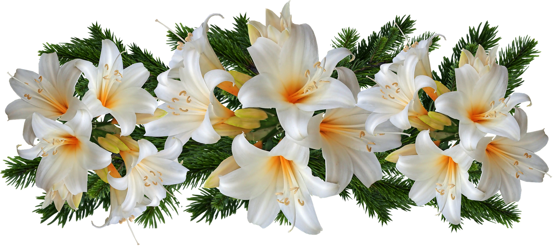 flower_098.png