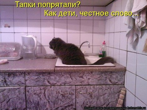 h_3018_500.jpg