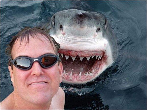 Shark_Selfie.jpg