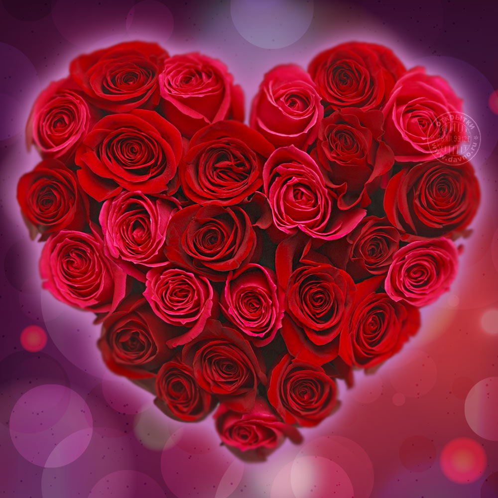 valentines-413.jpg